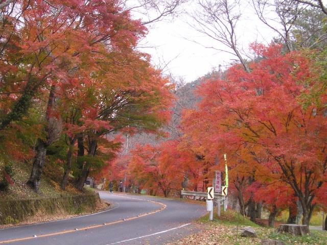 奥矢作湖・矢作ダム4