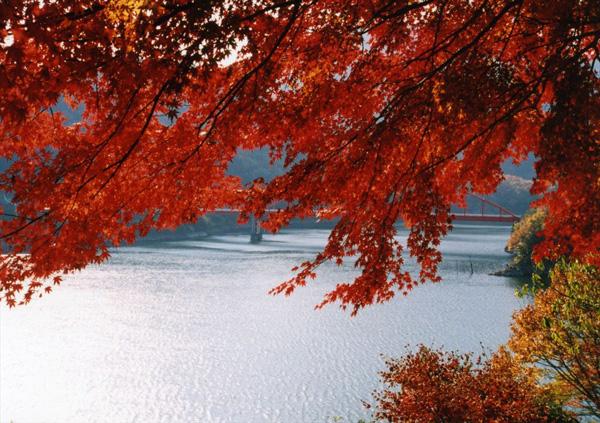 奥矢作湖畔