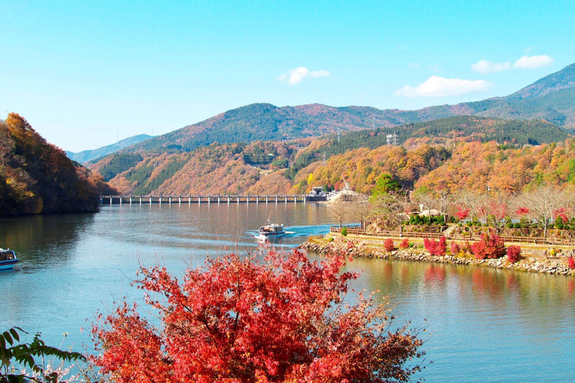 湖面に広がる紅葉を見ながらのクルージング