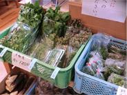 地元産新鮮野菜