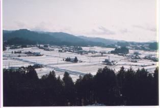 農村景観日本一地区4