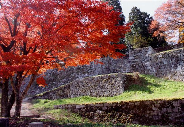 岩村城跡秋の風景