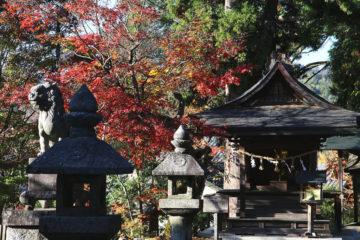 柿本人麻呂社と明智光秀公手植えの楓かえで(八王子神社)